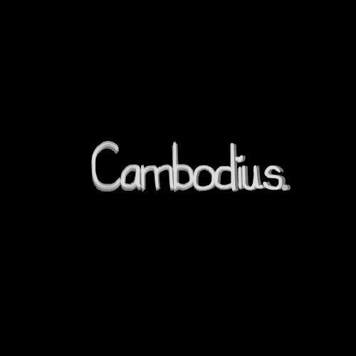 Calvin Harris & Disciples - How Deep Is Your Love(Cambodius  - Cambodius