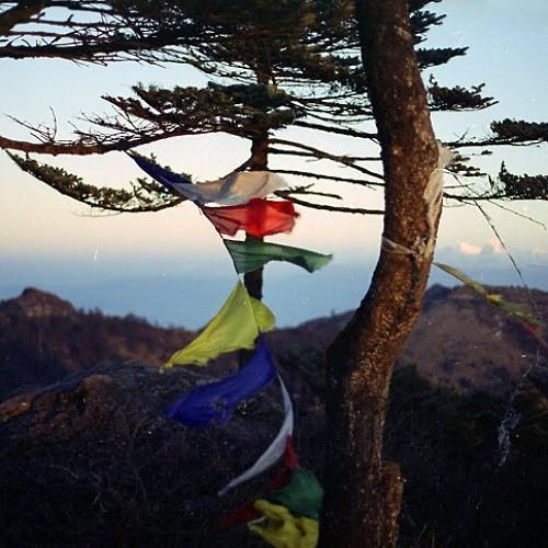 벨소리 Don't wait - Kilimanjaro