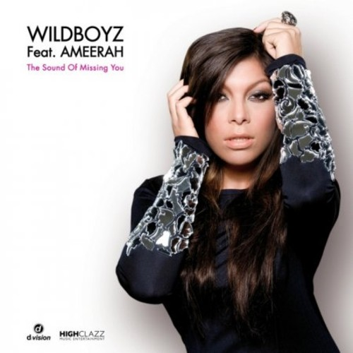 The Sound Of Missing You - Wildboyz feat. Ameerah