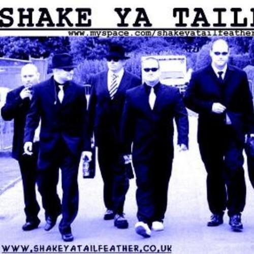 벨소리 Shake Ya Tailfeather - Shake Ya Tailfeather