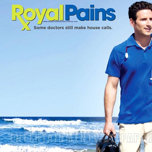 벨소리 Royal Pains theme - Royal Pains theme