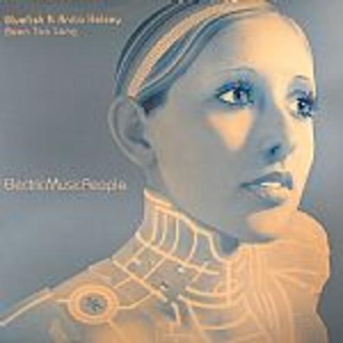 Been Too Long - bluefish feat.anita kelsey